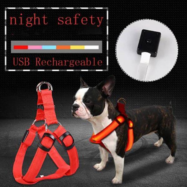 Pettorina led anti-smarrimento caricata da USB che mantiene gli animali al sicuro