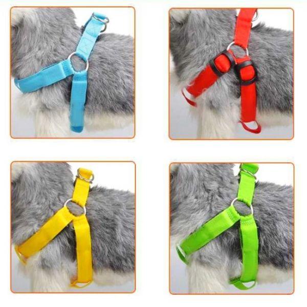 Pettorina led anti-smarrimento caricata da USB che puoi indossare sui cani