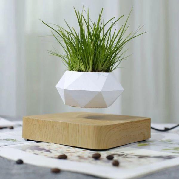 Vaso galleggiante magnetico per pianta bonsai