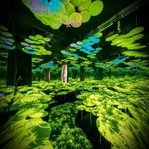 sistema immersivo per interni con molteplici effetti