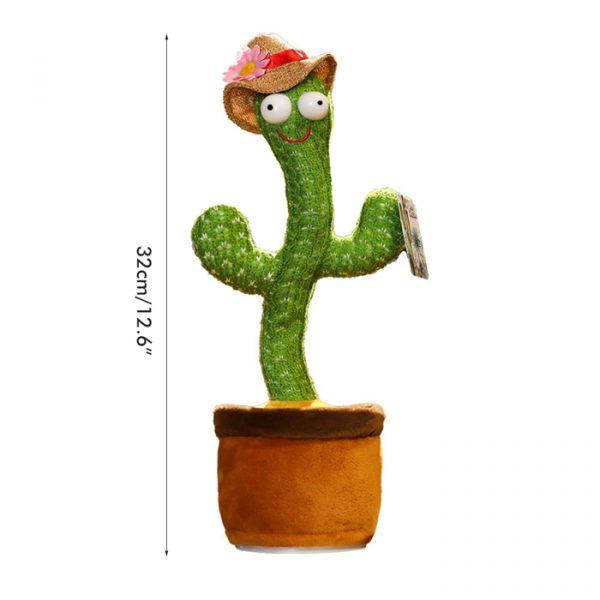 dimensioni del cactus parlante e danzante